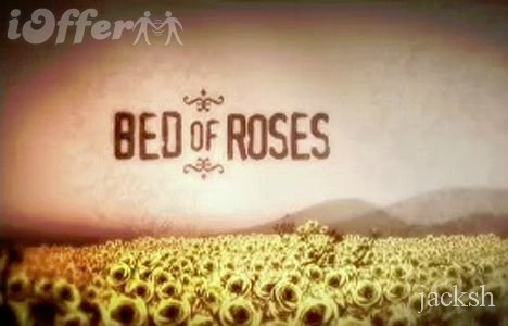 Bed Of Roses COMPLETE 3 Seasons (Aussie Series)