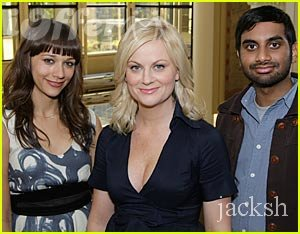 Parks and Recreation Seasons 1, 2, 3, 4 and 5