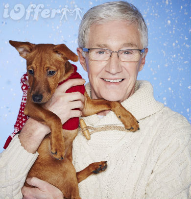Paul O'Grady for the Love of Dogs Season 5 (2016)