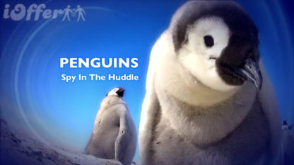 Penguins - Spy In The Huddle Complete Series 1