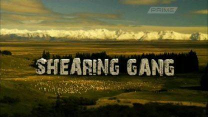 Shearing Gang Seasons 1 and 2 1