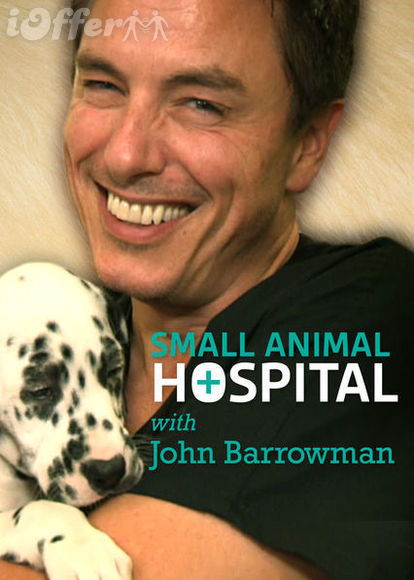Small Animal Hospital Complete Series (2014)