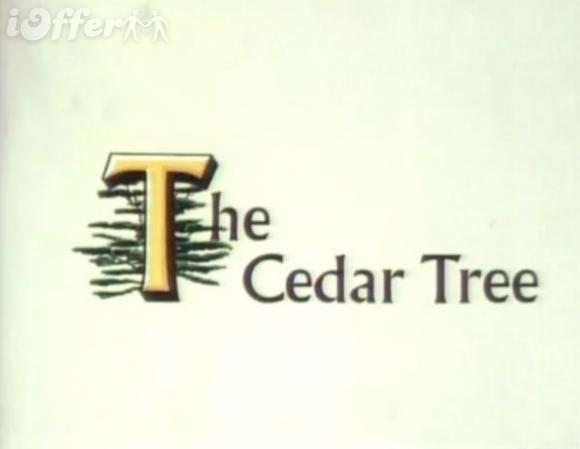 The Cedar Tree 1976 All 106 Episodes