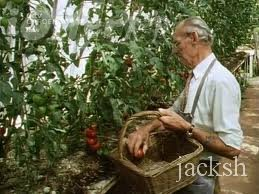 The Wartime Kitchen and Garden 1993 UK Television