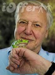 This Life with David Attenborough Complete Collection 1