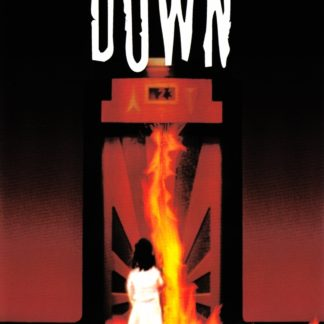 Down (The Shaft) 2001 DVD