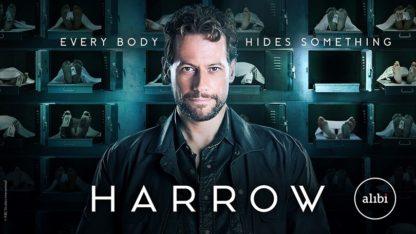 Harrow Season 2 (2019) DVD