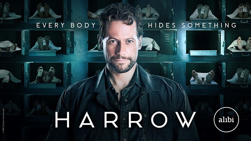 Harrow Season 2 (2019) Complete on DVD