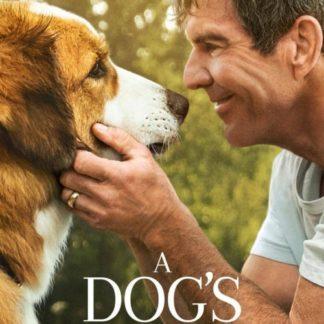 A Dog's Journey 2019 DVD