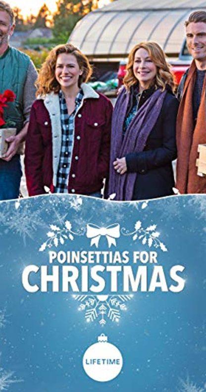 Poinsettias for Christmas 2018 DVD