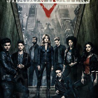 Shadowhunters Season 3 DVD