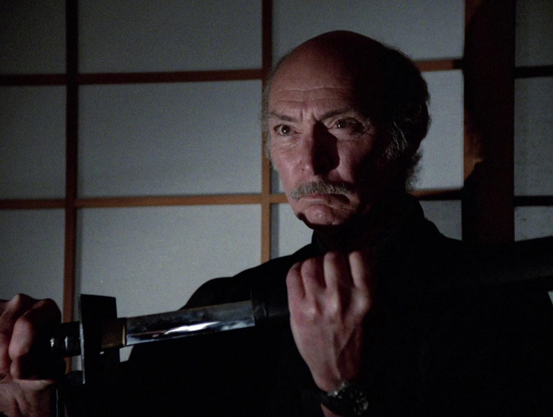 The Master (1984) starring Lee Van Cleef All Episodes