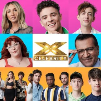 The X Factor UK Celebrity (DVD)