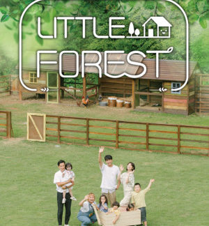 Little Forest (2019) DVD