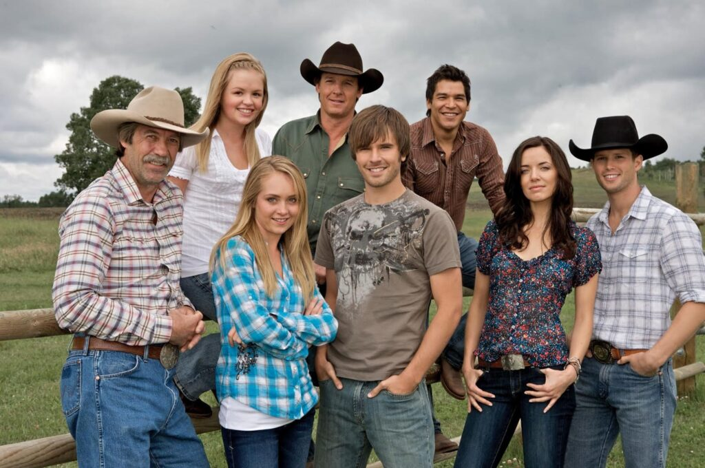 Heartland Season 14 (DVD)